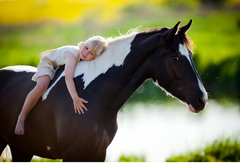 young child on horse