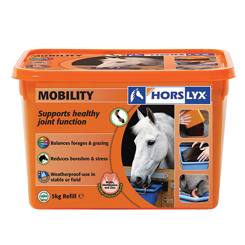 Horslyx Mobility Stable Vit & Mineral Lick 5Kg