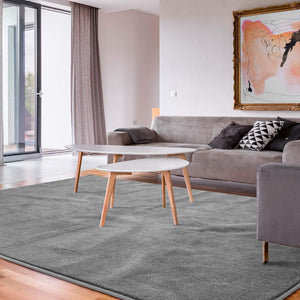 Ultra Soft Indoor Modern Shaggy Area Rugs Fashion Color Living Room Carpets Area Rugs for Home Decorate 4'x6' (Grey) - Better Daily Goods