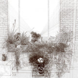 Studio Plants ©2014 Brent Holland