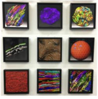 Biomorphic collection by Brent Holland at Studio Holland Art