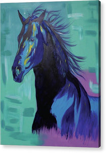 Blue Stallion  - Acrylic Print