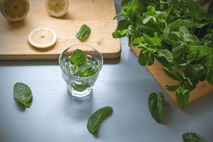Time To Lose Weight With The Safe And Effective Peppermint Tea