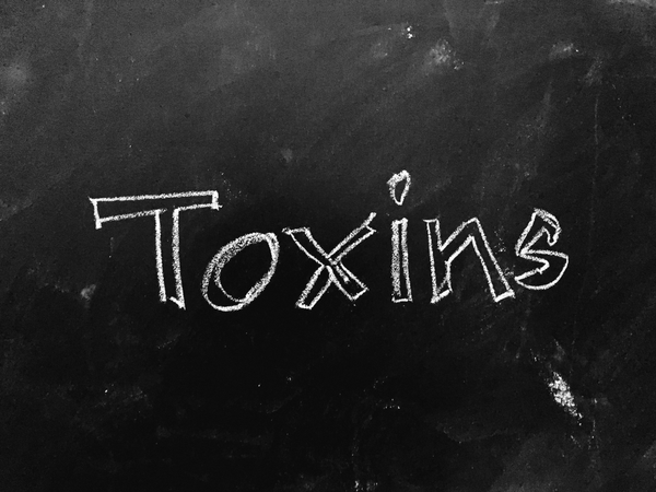 TOXINS AND CHEMICALS IN OUR DAILY LIFE