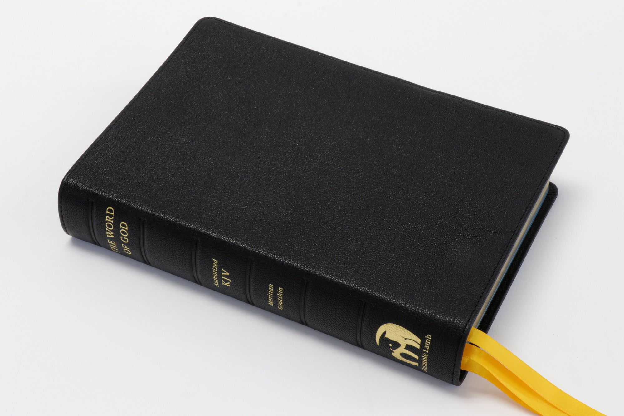 KJV Lion - Black - Premium Bible with illustrations from Gustave Dore