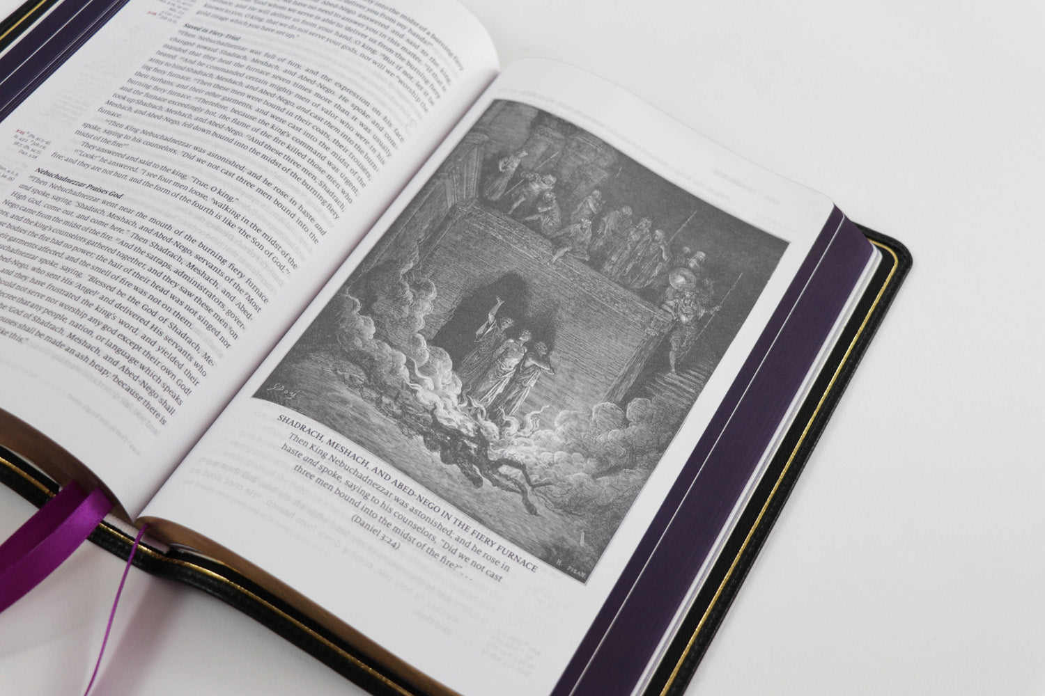 Word of God - Amethyst Edition - Premium Bible with illustrations from Gustave Dore