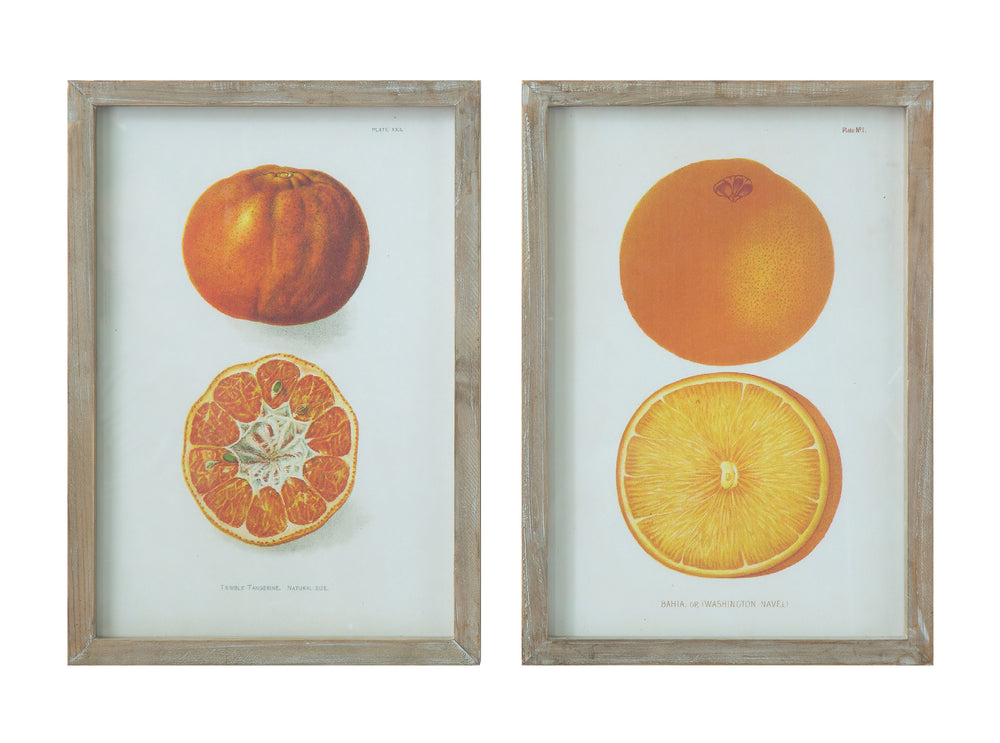 Orange & Tangerine Wall Décor SET
