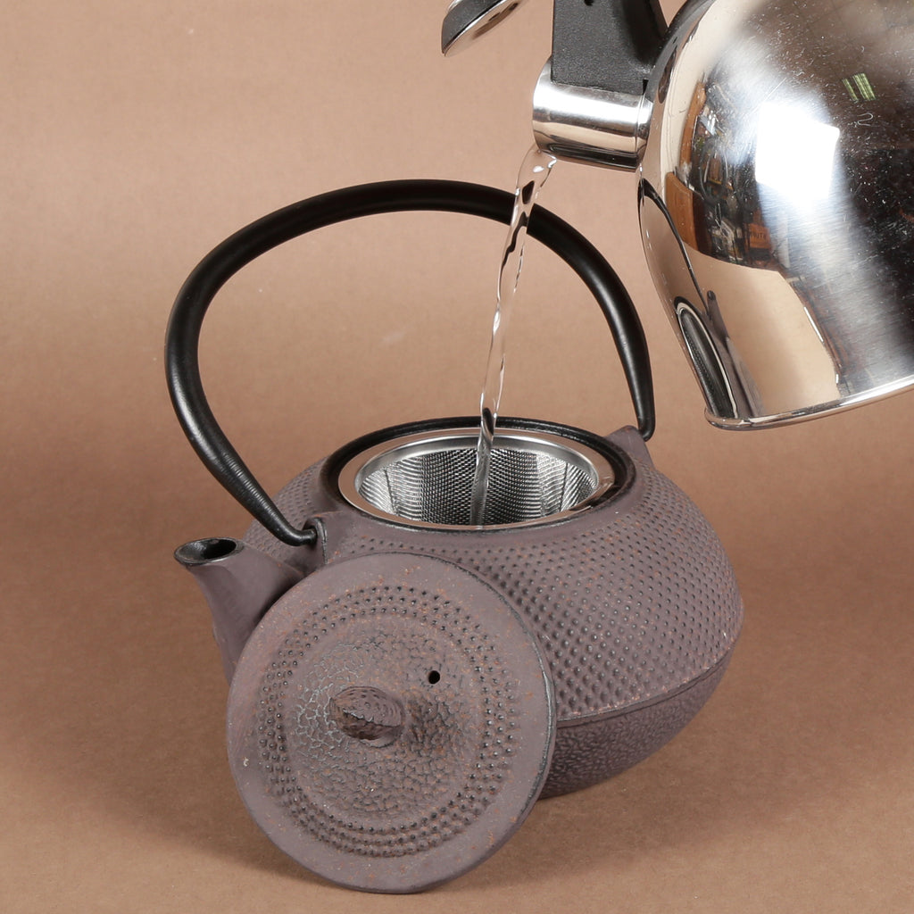 Creative Home 30 oz. Cast Iron Tea Pot with Removable Stainless Steel Infuser Basket