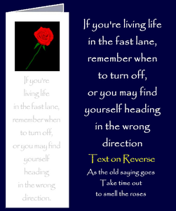 "Advice about Living Life in the Fast Lane by Peter Karsten from his book ""Be Great Be You"" inspired by learning life's lessons the hard way.  Bookmark sized greeting card with inspirational quote on front and back of card. The inside of this gift card has been left blank for your own personal message."