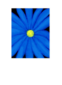 A floral greeting card / note card suitable for all occasions by New Zealand Artist Peter Karsten