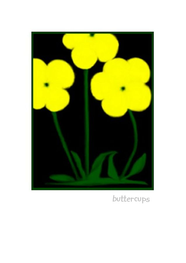 Wholesale Greeting Cards. Buttercups on a lovely greeting card, note card. Blank on the inside. Suitable for all occasions.