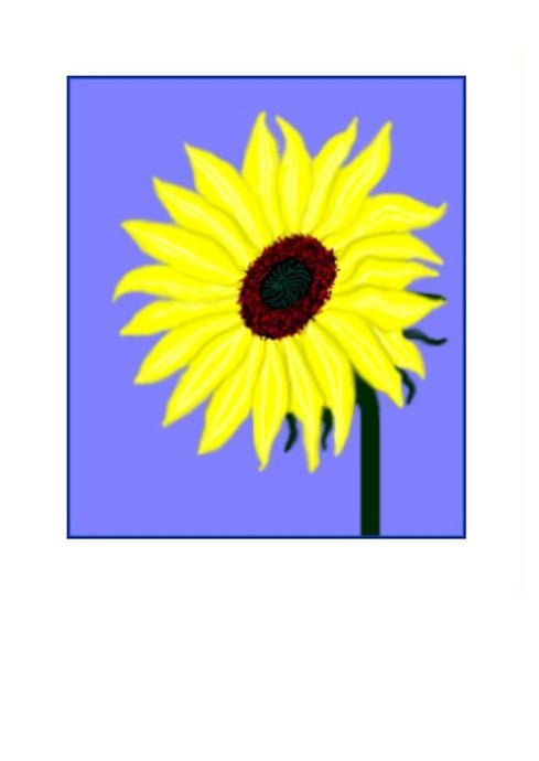 Sunflower on greeting card suitable for all occasions.  Wholesale Greeting Cards from New Zealand.