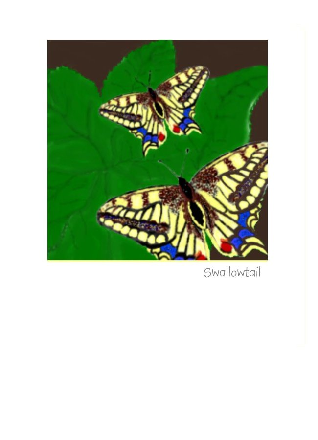 Swallowtail Butterfly Greeting Card or note card for all occasions