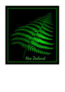 Wholesale Greeting Cards - New Zealand Fern greeting card, note card by artist Peter Karsten