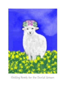 "Wholesale Greeting Cards with a sheep wearing curlers.  ""Getting ready for the tourist season."" Note card by NZ Artist Peter Karsten."
