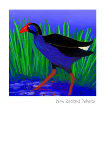 New Zealand Pukeko by NZ Artist Peter Karsten.  Wholesale Greeting Cards.