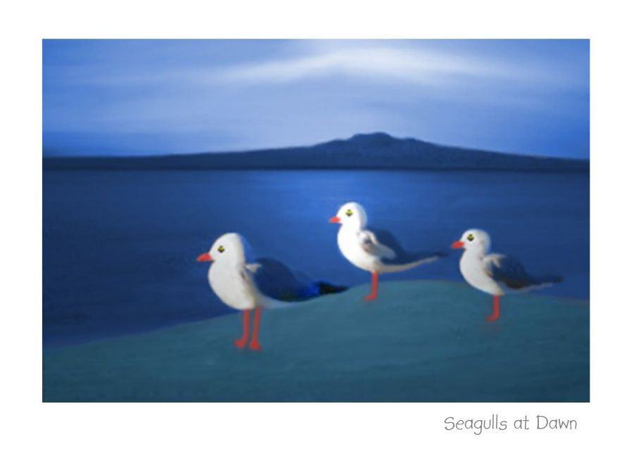 Seagulls at Dawn.  Greeting card, note card, art card by New Zealand Artist Peter Karsten.  Seagulls overlooking Rangitoto.