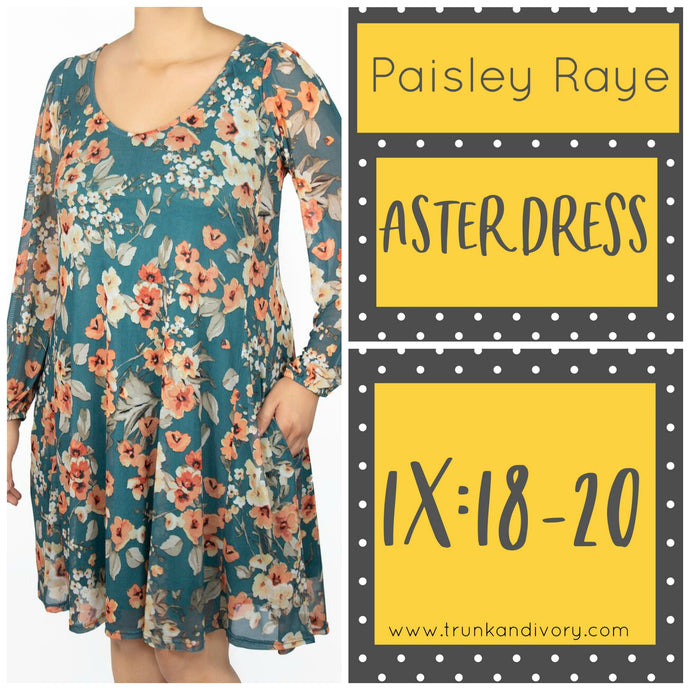 Paisley Raye Aster Dress Size 1X Green Floral Shop at www.trunkandivory.com