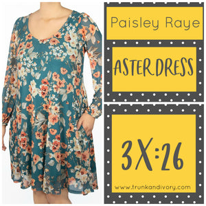 Paisley Raye Aster Dress Size 3X Green Floral Shop at www.trunkandivory.com