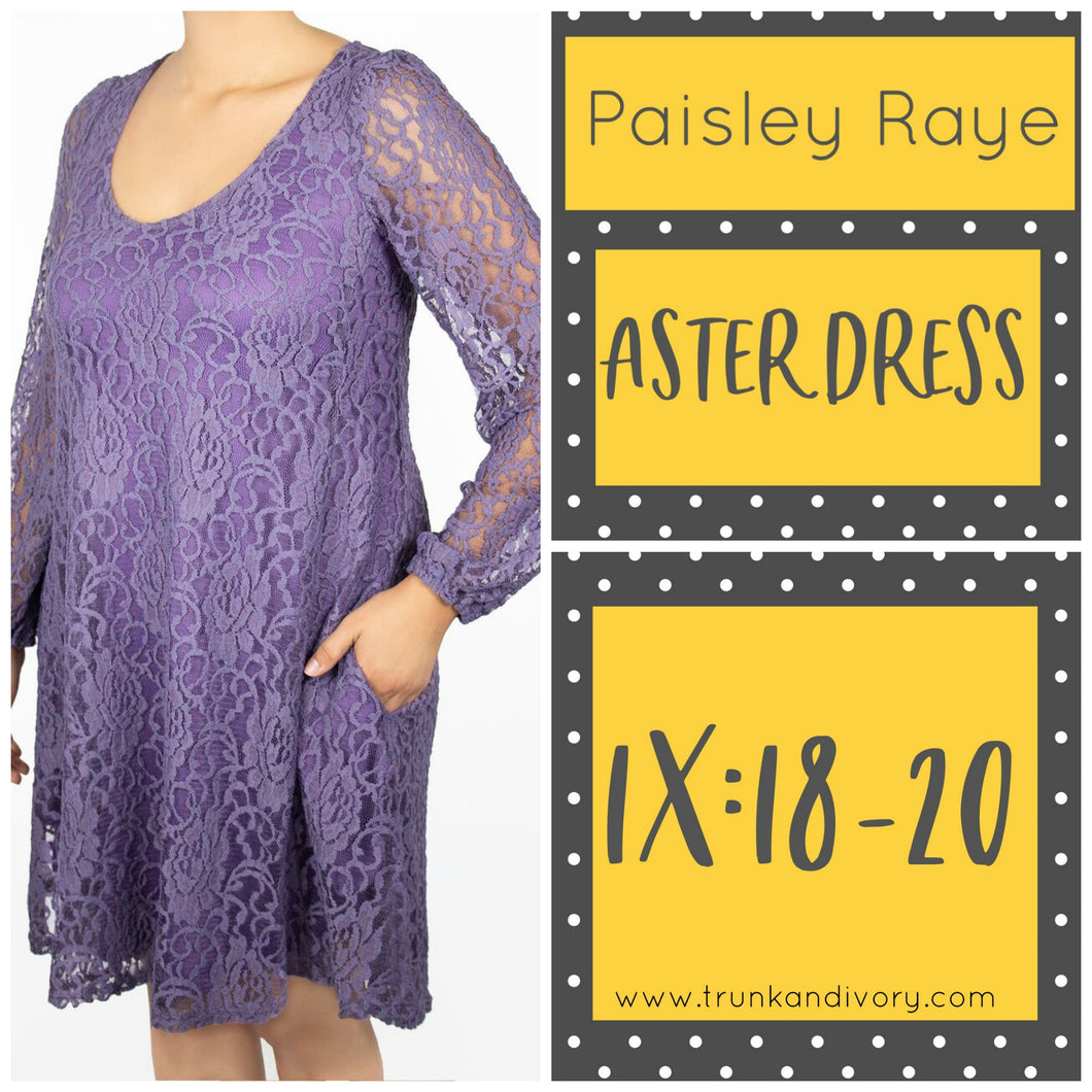 Paisley Raye Aster Dress Size 1X Purple Lace Shop at www.trunkandivory.com
