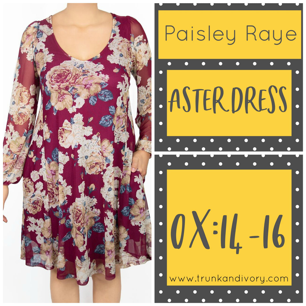 Paisley Raye Keyhole Aster Dress Size 0X Red Floral Shop at www.trunkandivory.com
