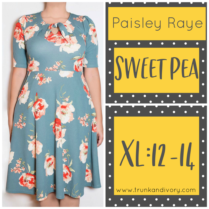 Paisley Raye Sweet Pea Dress-Teal Floral Print-XL  Shop by www.trunkandivory.com