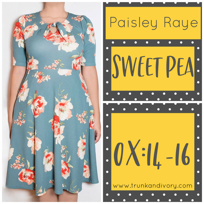 Paisley Raye Sweet Pea Key Hole Dress- Blue Floral Print - 0X By, Trunk and Ivory, Shop now at www.trunkandivory.com