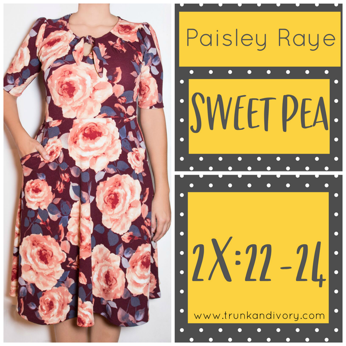 Paisley Raye Sweet Pea Dress-Burgandy Floral-S By, Trunk and Ivory, Shop now at www.trunkandivory.com