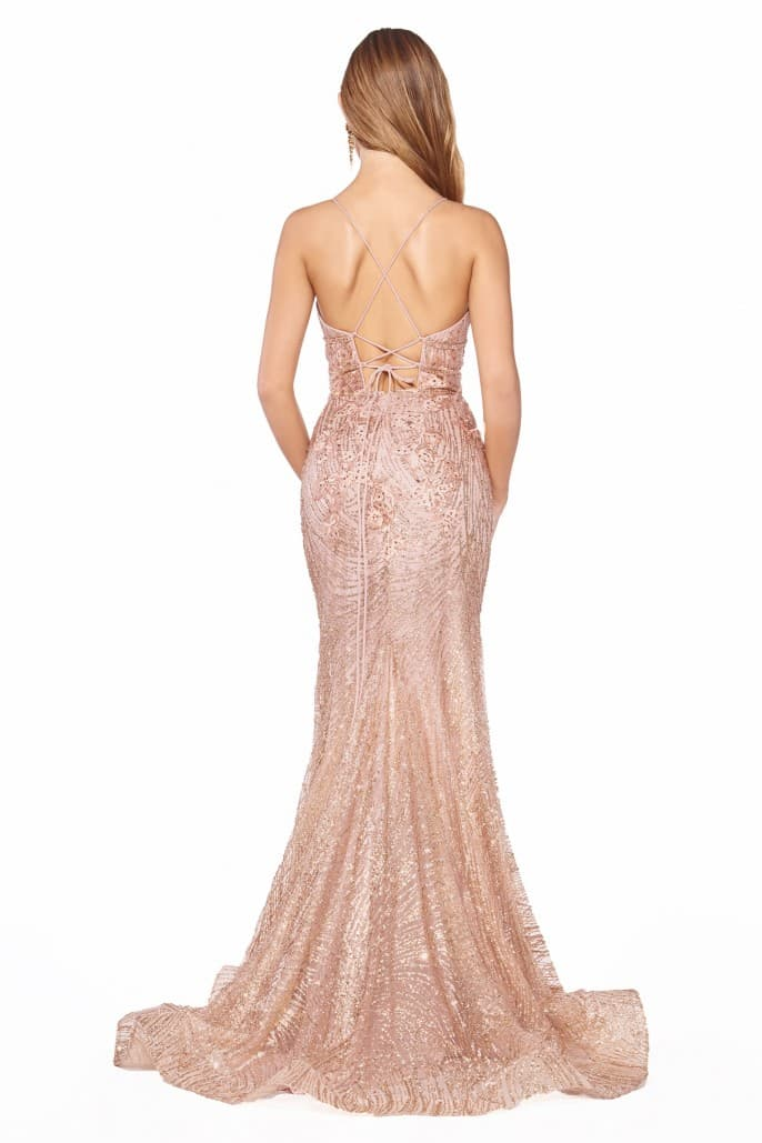 Fitted dress with glitter lace applique and open back