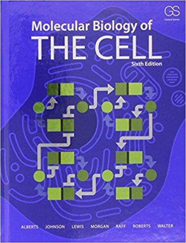 Most popular pdfxpress molecular biology of the cell 6th edition pdf ebook fandeluxe Gallery
