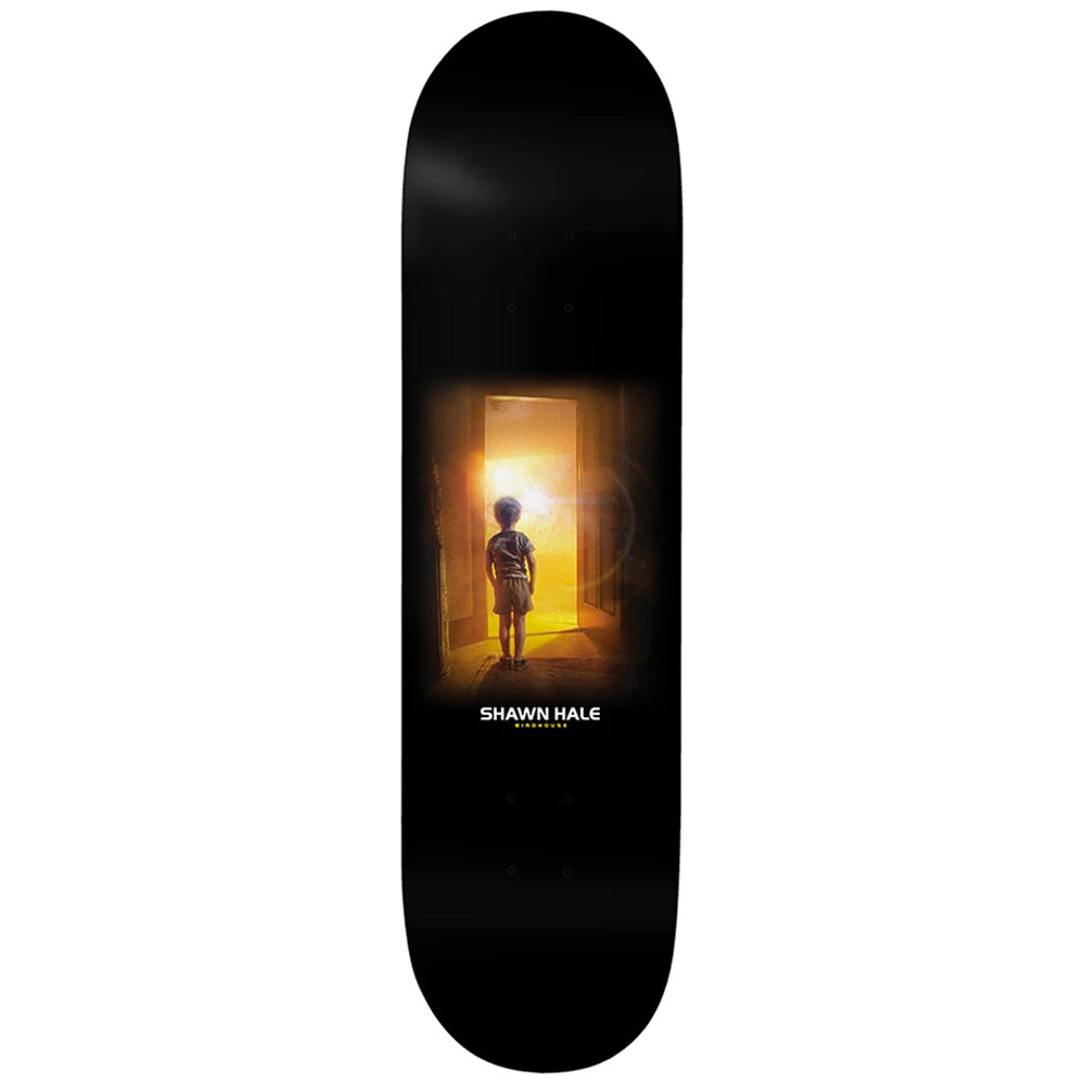 shawn-hale-encounters-2-deck-8-5-wide