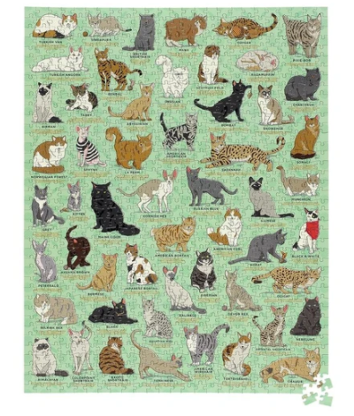 Cat Lover's 1000 Piece Jigsaw Puzzle