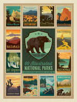 Load image into Gallery viewer, National Parks- Special Edition Bear Puzzle