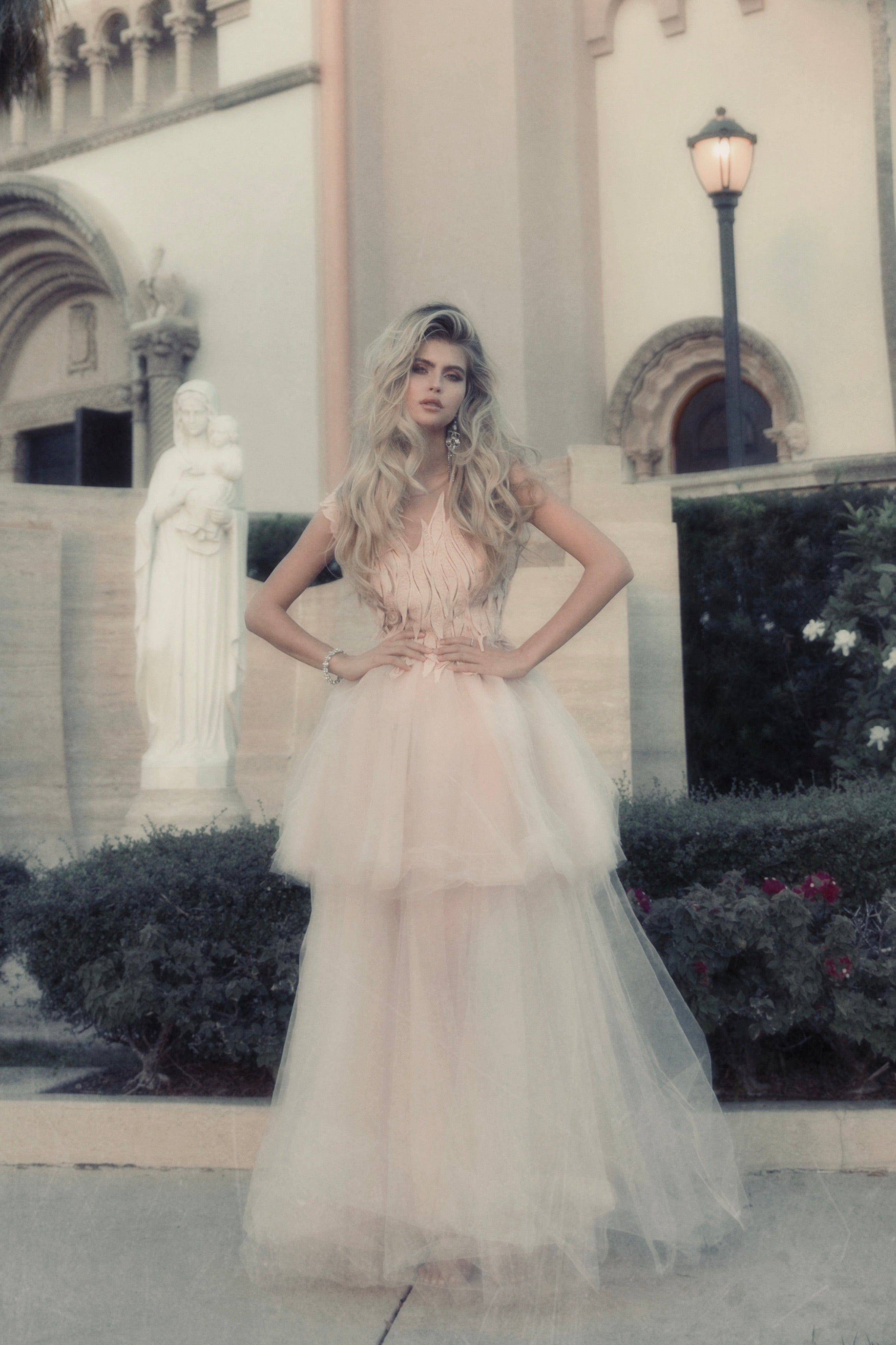 Ethereal  tulle lace gown