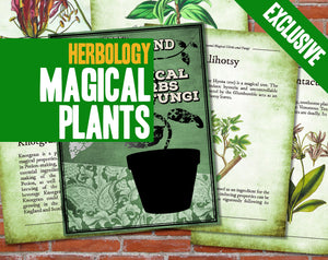 One Thousand Magical Herbs and Fungi