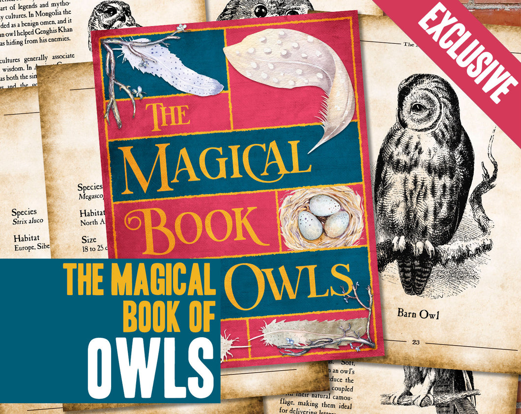 The Magical Book of Owls