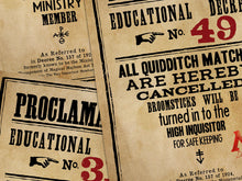 Load image into Gallery viewer, Umbridge Proclamation Posters - Extended