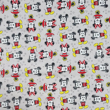 Load image into Gallery viewer, Mickey and Minnie Moments - Fabric Face / Dust Mask