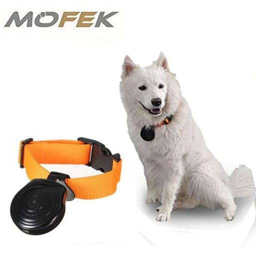 Wellnostics - Mofek 16G Automatic Pet Collar Mini Camera Monitor