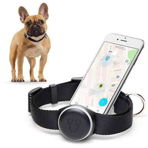 Wellnostics - Mishiko PET Dog GPS Tracker & Fitness Planner - No Subscription
