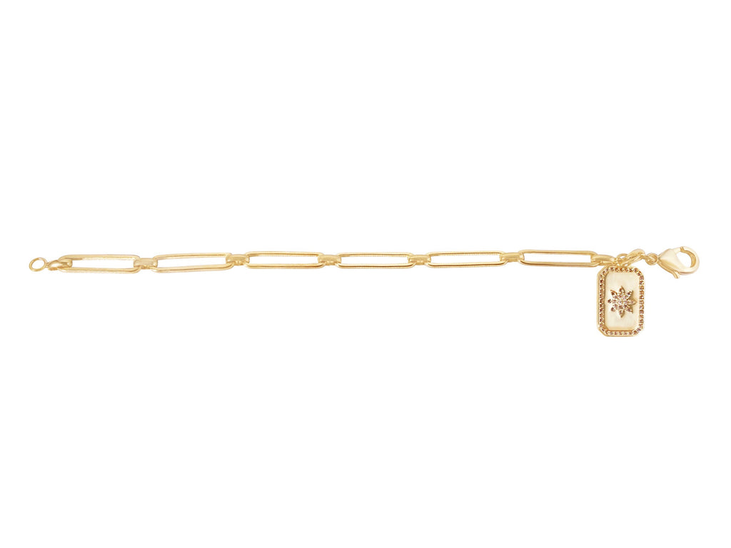 Link Chain Long Bracelet with Medallion