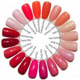 Color Wheel Swatch - 20 Blank Tips