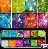 Glitter Kit Sets with 12 Different Glitters -  Mylar Mix BGZ