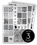Collection 21 - Set of 3 Uber Chic Stamping Plates