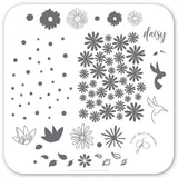 Daisy Do, Daisy Don't (CjS-113)  - CJS Small Stamping Plate