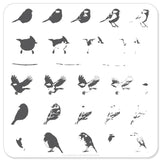 Itty Bitty Birds (CjS-30) -  CJS Small Stamping Plate