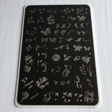 Serendipity  (CjS-23) - Clear Jelly Stamping Plate