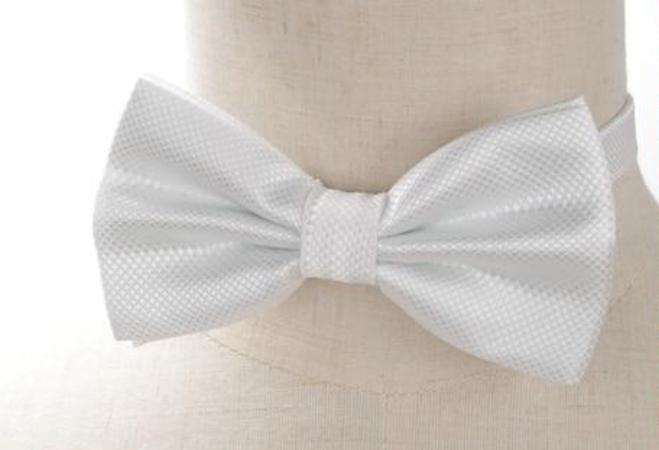 Pre-tied White Cross-hatch Bow Tie
