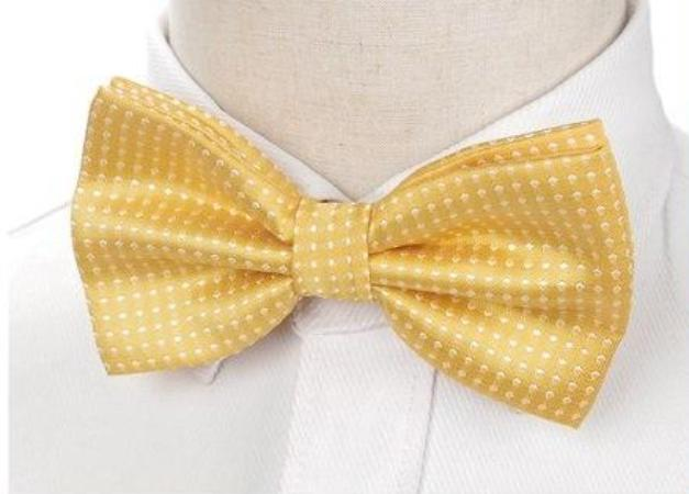 Pre-tied Yellow Polka Dot Bow Tie