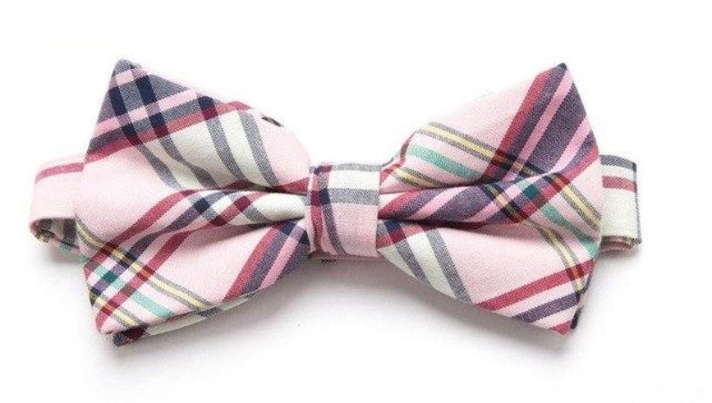 Pre-tied Blue/Pink Plaid Cotton Bow Tie